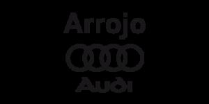 16_arrojoaudi_web